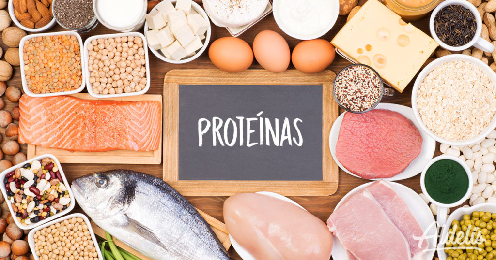 Alimentos ricos en proteínas Aldelís