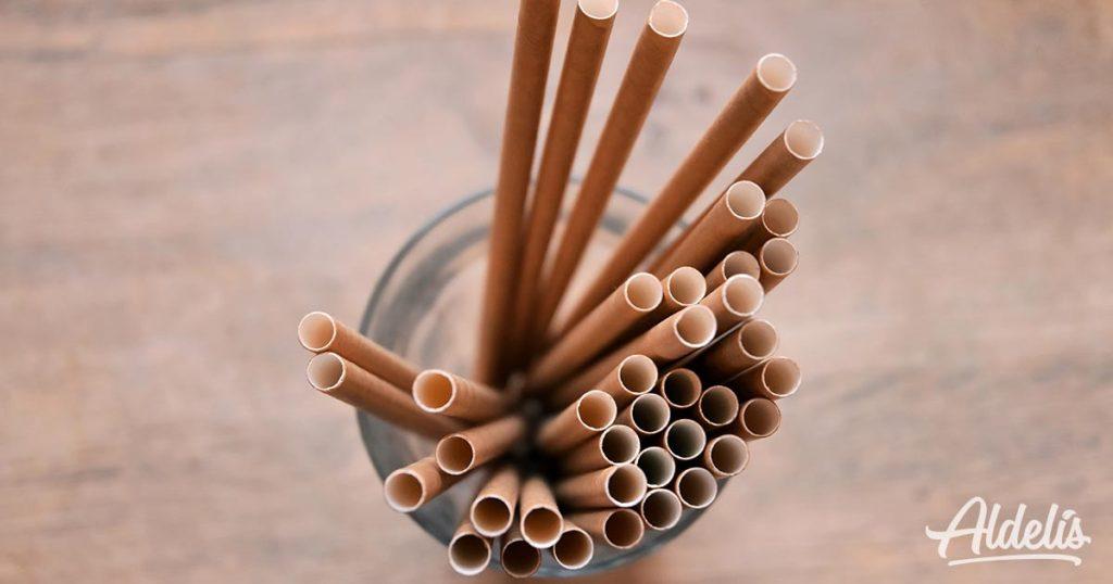 pajitas-de-bambú-Aldelís