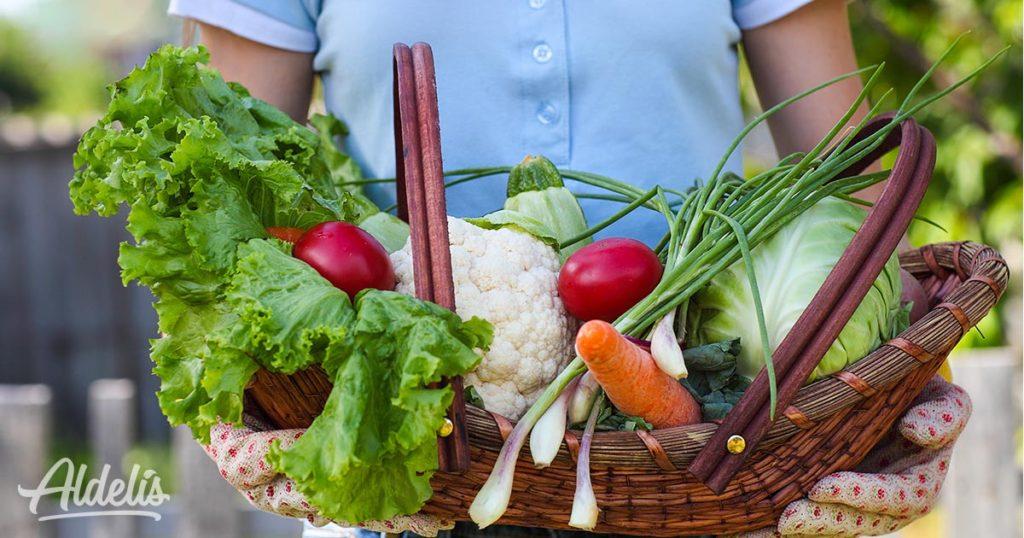 verduras-temporada-Aldelís